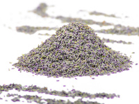 Lavendelblüten tiefblau aus der Provence