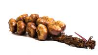 Geräucherter Knoblauch (Zopf)